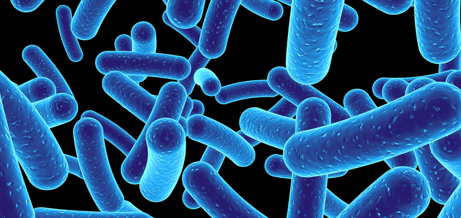 New collaboration to tackle antibiotic resistance